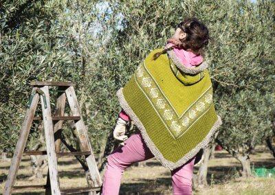 champ oliviers pézenas