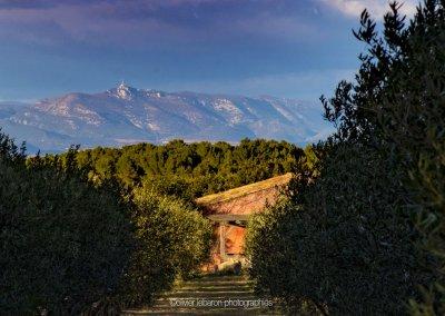 beau panorama du languedoc pézenas