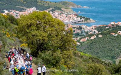 20ème Ascension des vignes du seigneur à Banyuls sur Mer