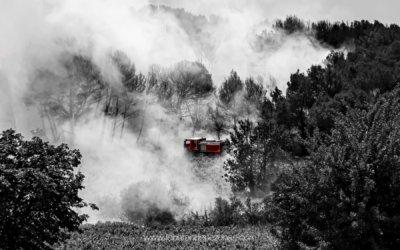 Au coeur d'un feu de foret, les pompiers luttent contre l'incendie